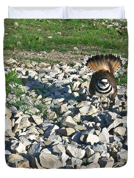 Female Killdeer Protecting Nest Duvet Cover by Douglas Barnett