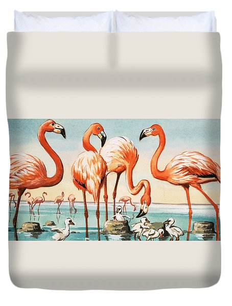 Flamingoes Duvet Cover by English School