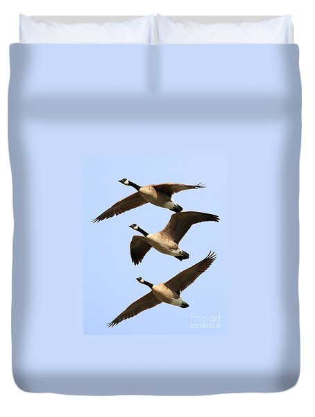 Flight of Three Geese Duvet Cover by Wingsdomain Art and Photography