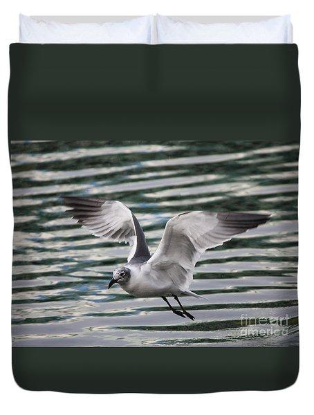 Flying Seagull Duvet Cover by Carol Groenen