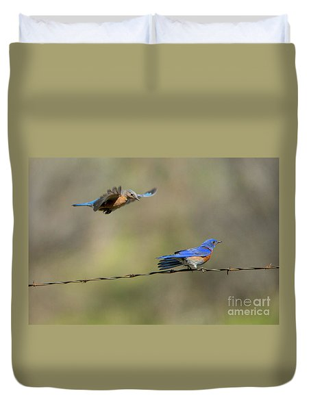 Flying To You Duvet Cover by Mike Dawson