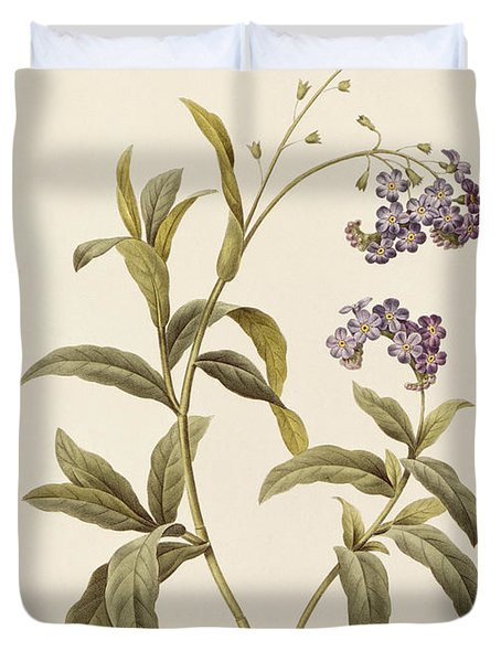 Forget Me Not Duvet Cover by Pierre Joseph Redoute