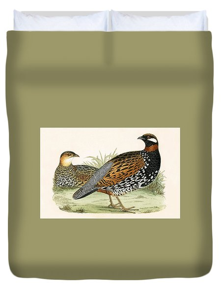 Francolin Duvet Cover by English School