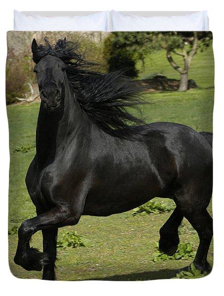 Friesian horse in galop Duvet Cover by Michael Mogensen