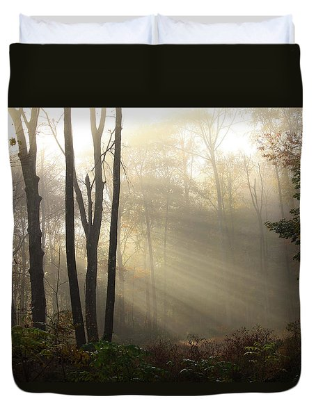 From Above Duvet Cover by Karol Livote
