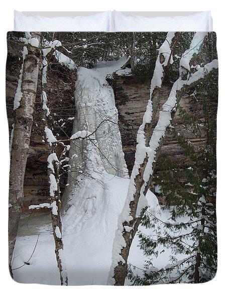 Frozen Duvet Cover by Michael Peychich