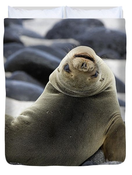 Galapagos Sea Lion Duvet Cover by David Hosking and Photo Researchers
