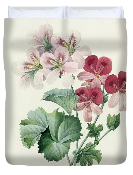 Geranium Variety Duvet Cover by Pierre Joseph Redoute