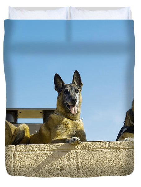 German Shephard Military Working Dogs Duvet Cover by Stocktrek Images