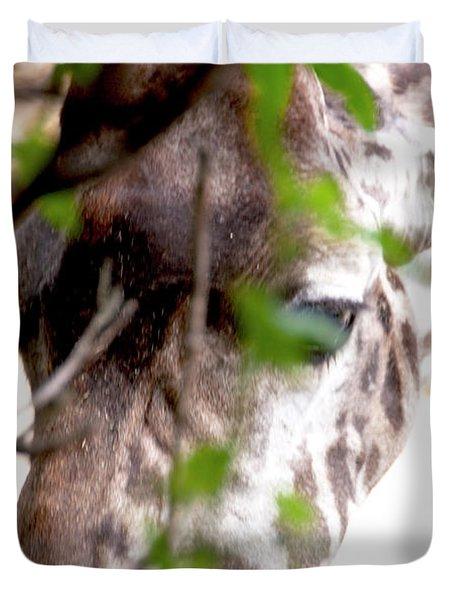 Giraffe Duvet Cover by Steven Natanson