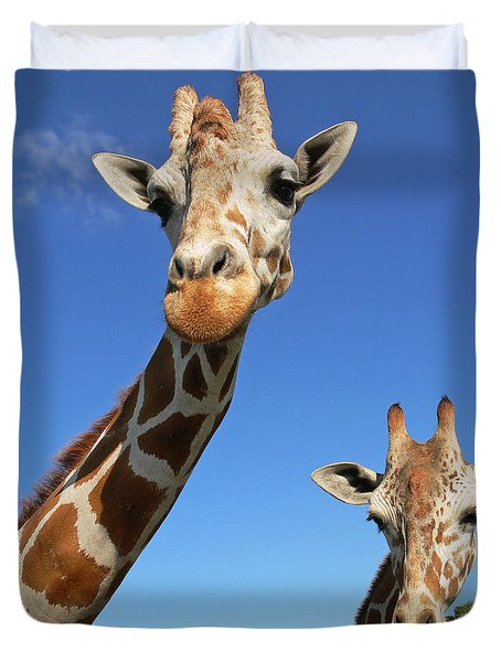 Giraffes Duvet Cover by Steven Sparks