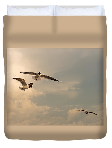 Gliders Duvet Cover by Don Spenner