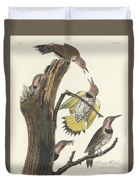 Gold-winged Woodpecker Duvet Cover by John James Audubon