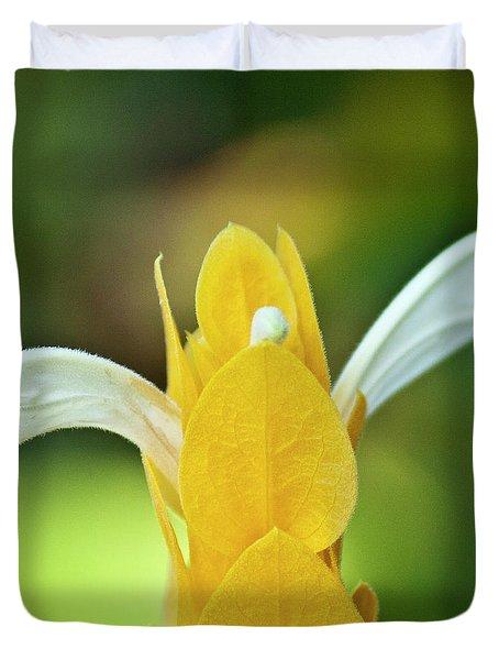 Golden Shrimp Plant Duvet Cover by Heiko Koehrer-Wagner
