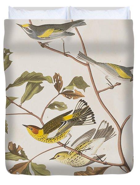 Golden Winged Warbler Or Cape May Warbler Duvet Cover by John James Audubon