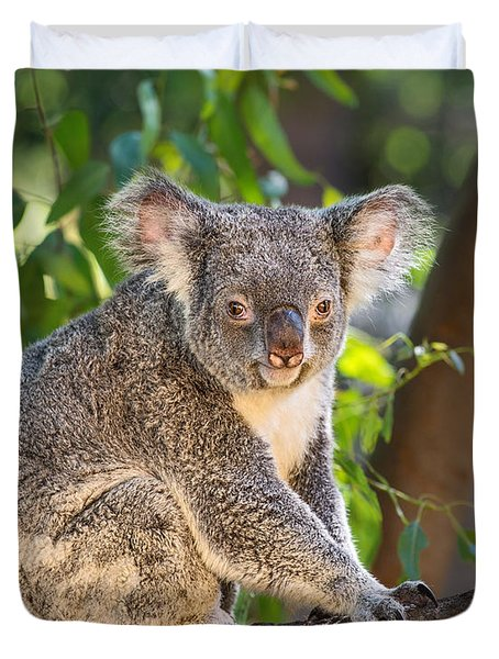 Good Morning Koala Duvet Cover by Jamie Pham