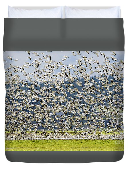 Goose Storm Duvet Cover by Mike Dawson