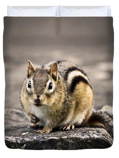 Got Nuts Duvet Cover by Evelina Kremsdorf