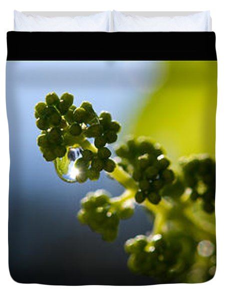 Grape Vines And Water Drops Triptych Duvet Cover by Lisa Knechtel