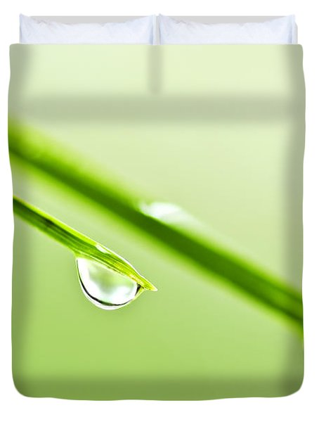 Grass blades with water drops Duvet Cover by Elena Elisseeva