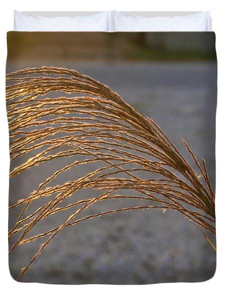 Grassflowers in the Setting Sun Duvet Cover by Douglas Barnett