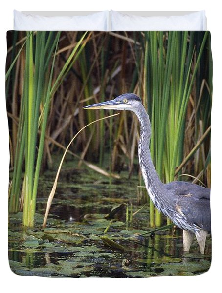 Great Blue Heron Duvet Cover by Natural Selection David Spier