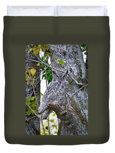 Great Horned Owl Duvet Cover by Athena Mckinzie