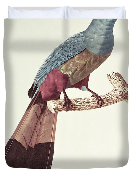 Great Touraco Duvet Cover by Jacques Barraband