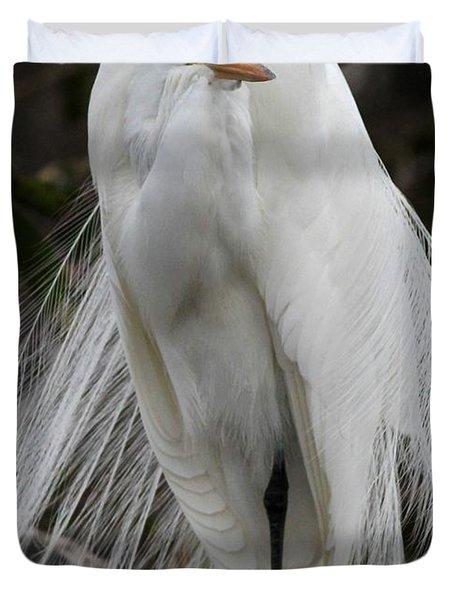 Great White Egret Windblown Duvet Cover by Sabrina L Ryan