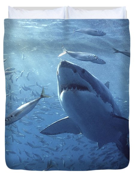 Great White Shark Carcharodon Duvet Cover by Mike Parry