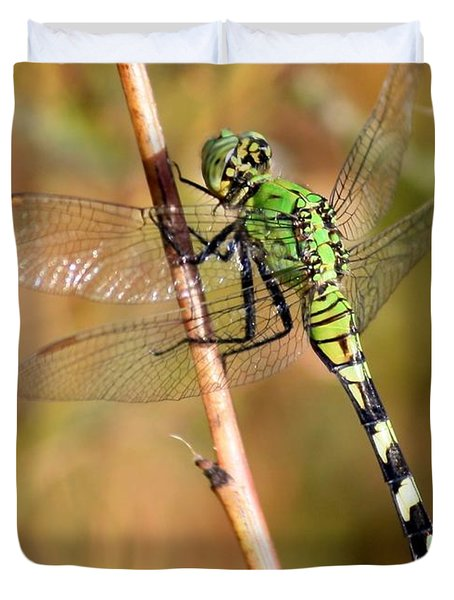 Green Dragonfly Closeup Duvet Cover by Carol Groenen