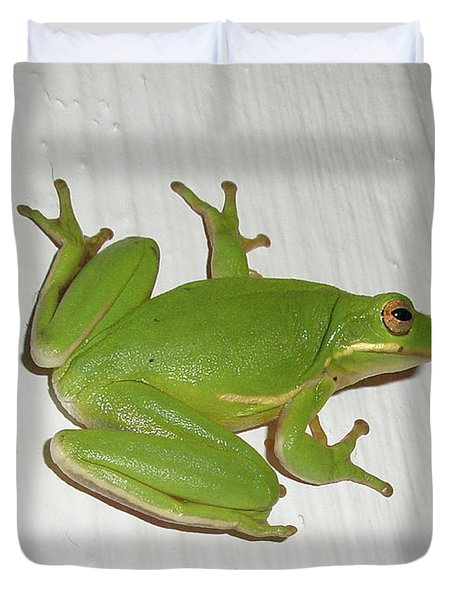 Green Tree Frog - Hyla Cinerea Duvet Cover by Mother Nature