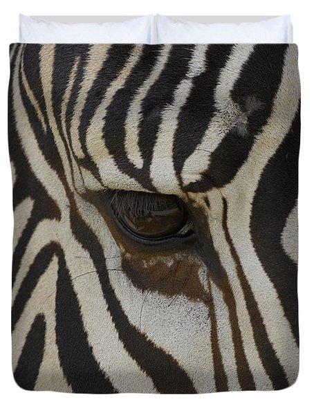 Grevys Zebra Equus Grevyi Close Duvet Cover by Zssd