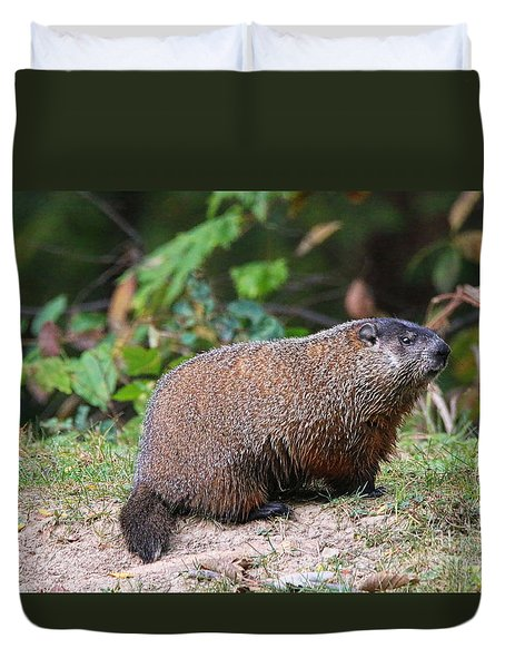 Groundhog  0590 Duvet Cover by Jack Schultz