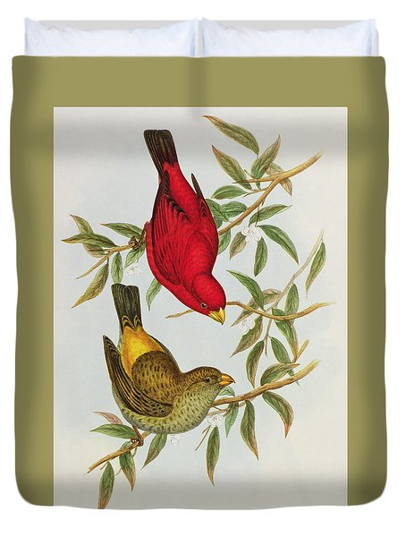 Haematospiza Sipahi Duvet Cover by John Gould