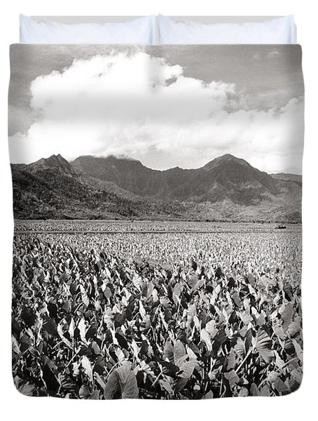 Hanalei Taro Fields Duvet Cover by Bob Abraham - Printscapes