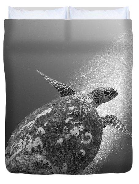 Hawksbill Turtle Ascending Duvet Cover by Steve Jones
