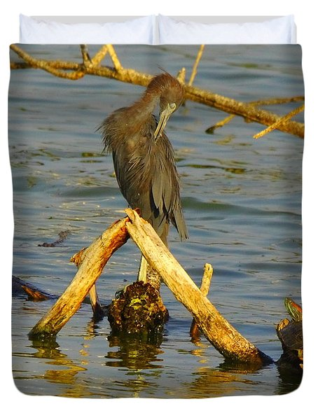 Heron And Turtle Duvet Cover by Robert Frederick