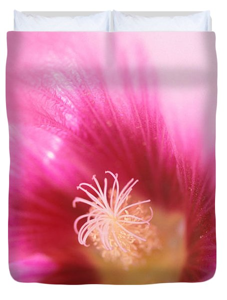 Hollyhock Closeup Duvet Cover by Kathy Yates