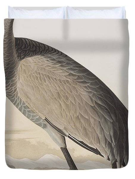 Hooping Crane Duvet Cover by John James Audubon