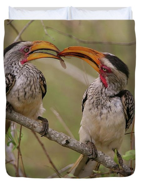 Hornbill Love Duvet Cover by Bruce J Robinson