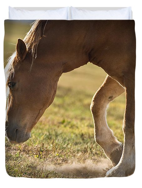 Horse Pawing In Pasture Duvet Cover by Steve Gadomski