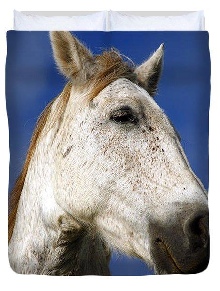 Horse portrait Duvet Cover by Gaspar Avila