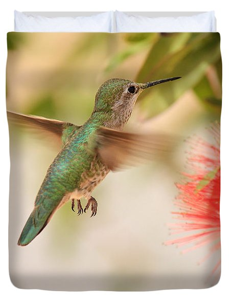 Hummingbird In Paradise Duvet Cover by Penny Meyers