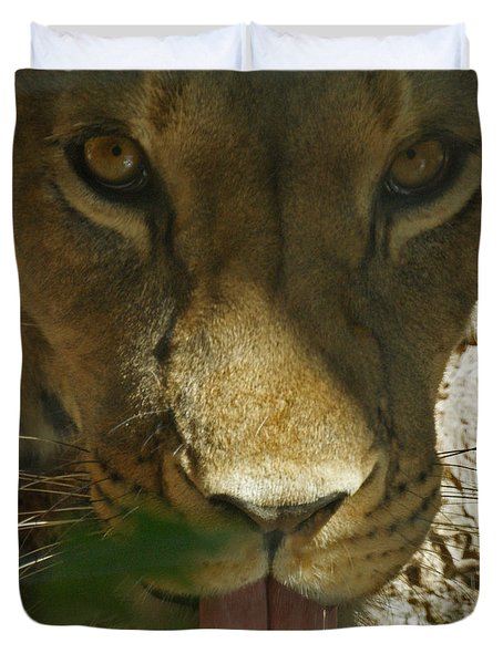 I See You 2 Duvet Cover by Ernie Echols