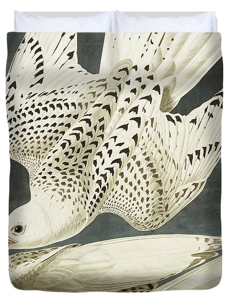 Iceland Or Jer Falcon Duvet Cover by John James Audubon