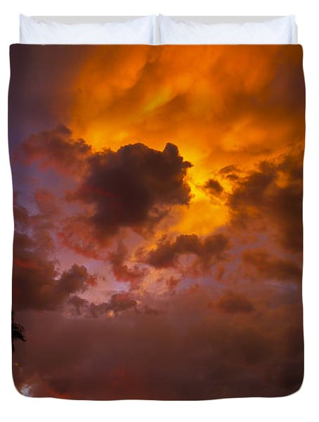 Intuition Duvet Cover by Skip Hunt