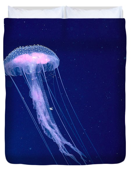 Jellyfish Duvet Cover by Dave Fleetham - Printscapes
