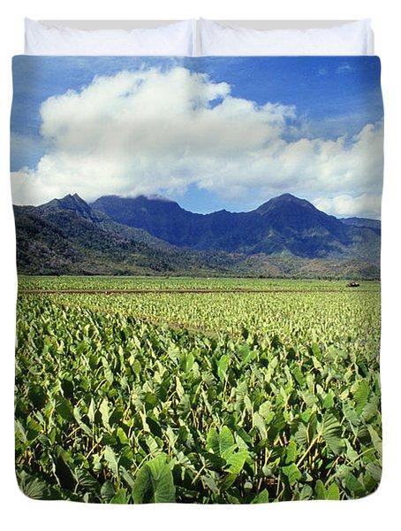 Kauai, Wet Taro Farm Duvet Cover by Bob Abraham - Printscapes