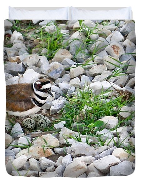 Killdeer 1 Duvet Cover by Douglas Barnett